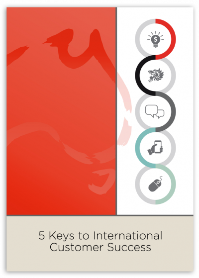 5 Keys to International Customer Success icon
